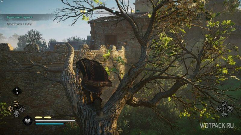Assassin's Creed: Valhalla – Эйвор на дереве