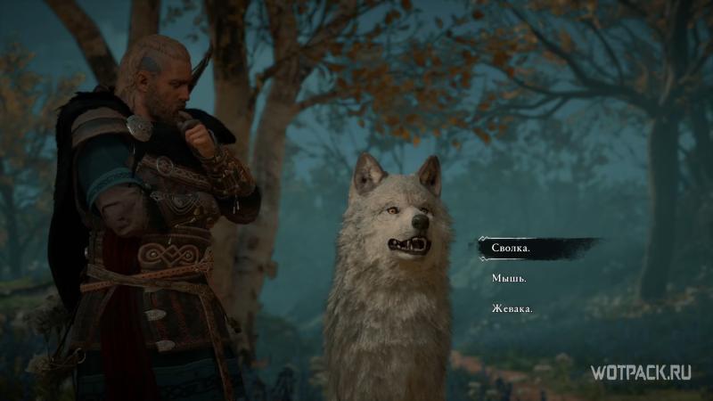 Assassin's Creed: Valhalla – Выбор имени для волчицы