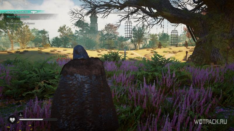 Assassin's Creed: Valhalla – Эйвор в поле с цветами