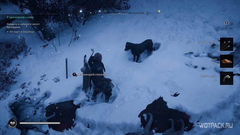 Assassin's Creed: Valhalla – Эйвор в окружении волков