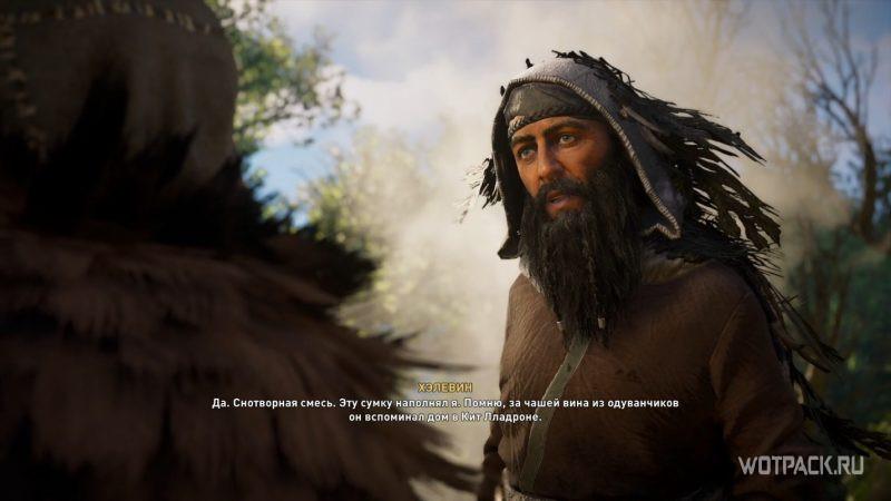 Assassin's Creed: Valhalla – Друид